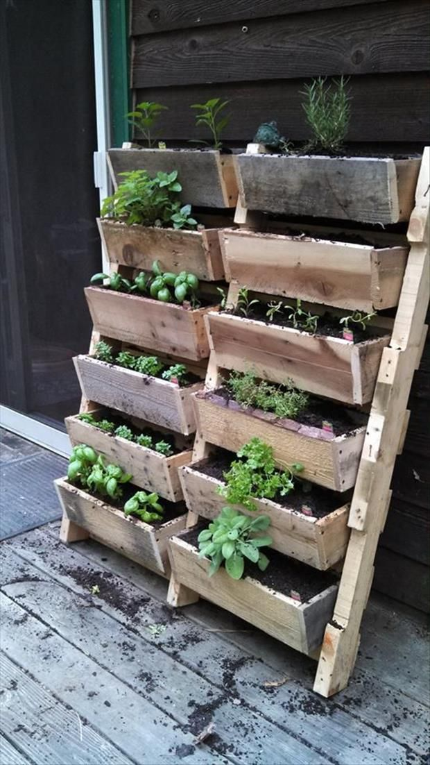Amazing Uses For Old Pallets 50 Pics Garden Pinterest