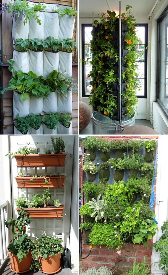 Como Hacer Jardines Verticales Caseros Beautiful Interesting