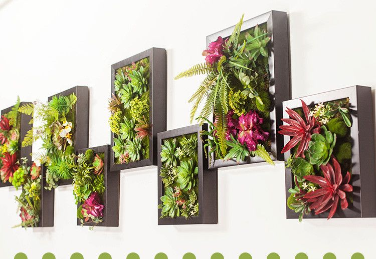 Decoracion Con Plantas En Pared Buscar Google Dise O