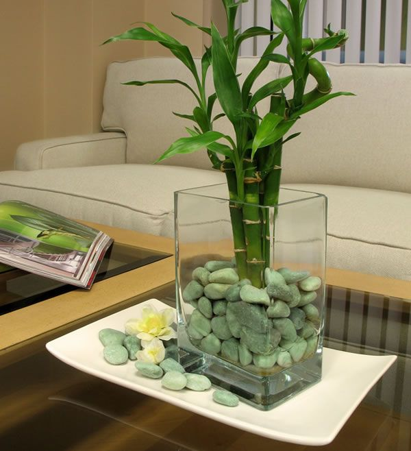 Decorar Con Ca As De Bamb Creative Pinterest Bamboo