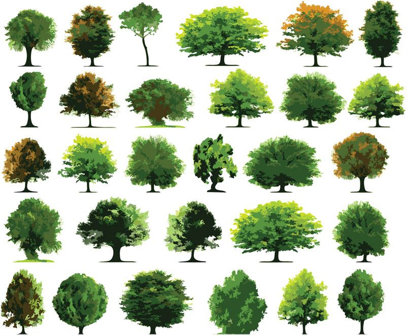 Green Trees Vector Graphics Blog Art Techniques To Try