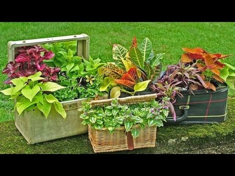 IDEAS PARA DECORAR EL JARDIN CON ELEMENTOS RECICLADOS YouTube
