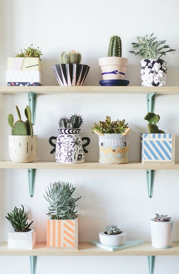 Ideas Para Decorar Interiores Con Cactus Plantas De