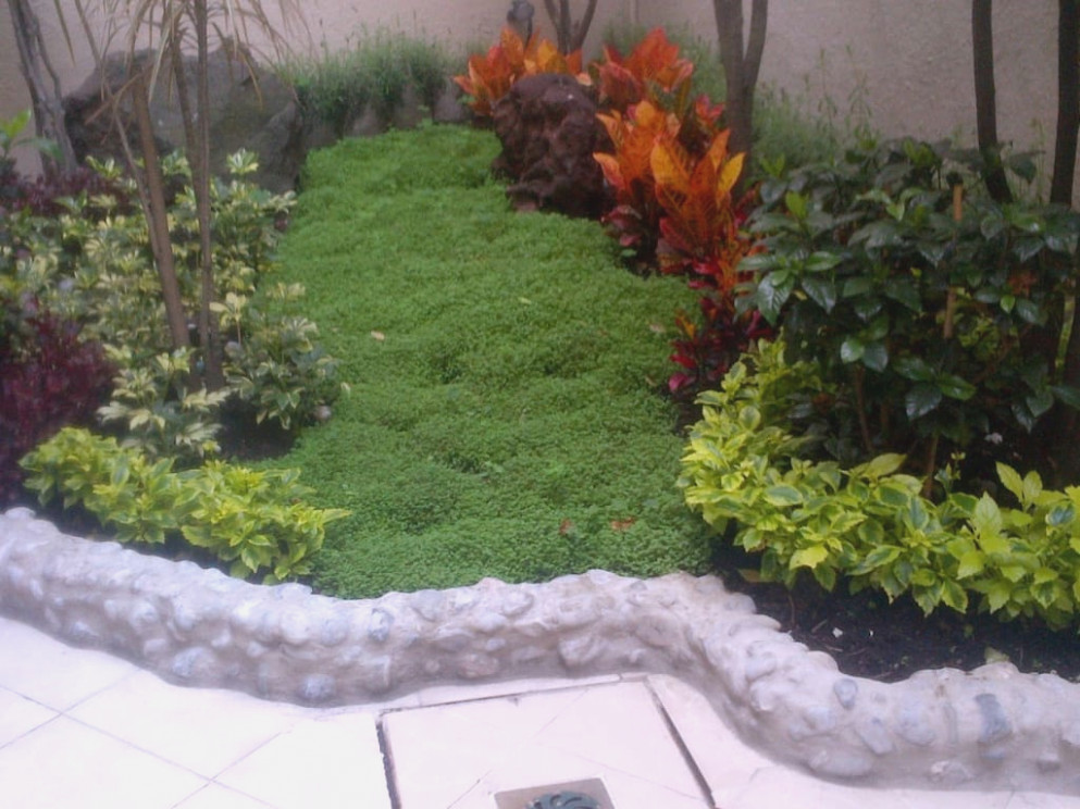 Ideas Para El Jardin Decorar Su Jardn With