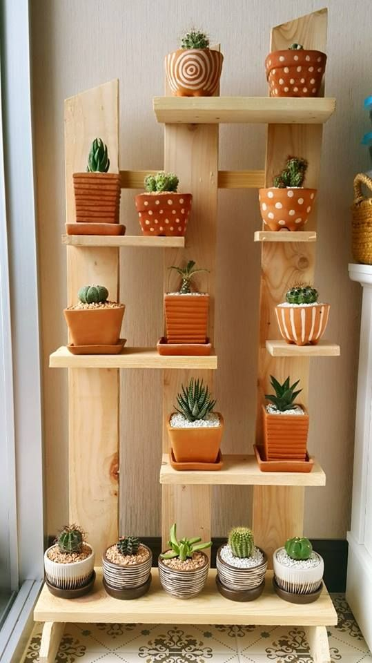 Pin By Kanokwan Lersiripong On Cactus Idea In 2018 Pinterest