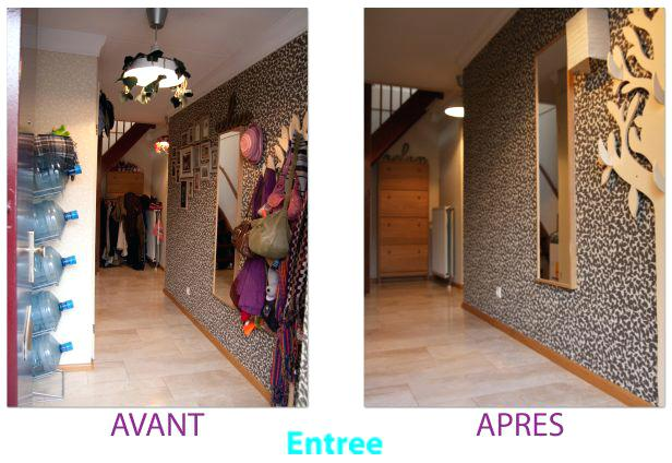 Refaire Son Entree De Maison Deco Attractive Hall D Comment Decorer