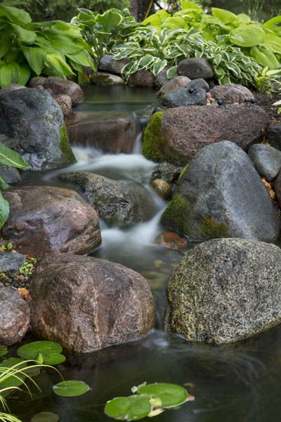 The Cool Appeal Of Shady Ponds And Waterfalls Garden Pinterest